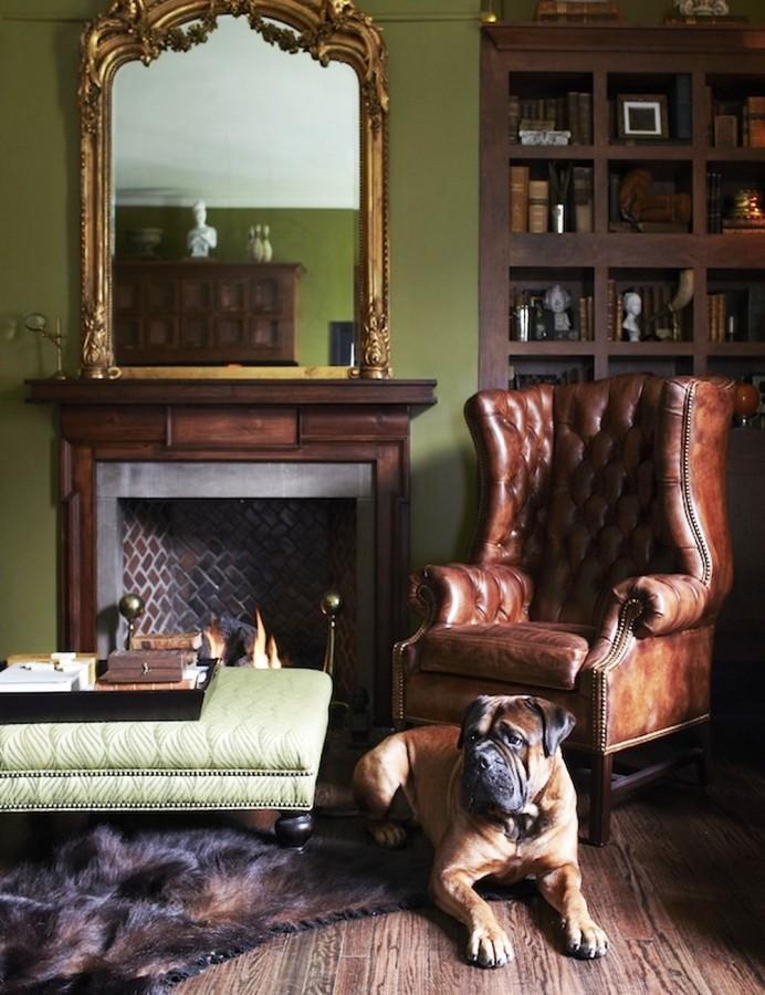 Породистая собака возле каминного кресла в гостиной