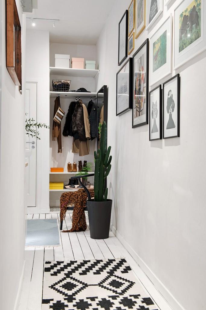 Кактус в напольном горшке в узком коридоре