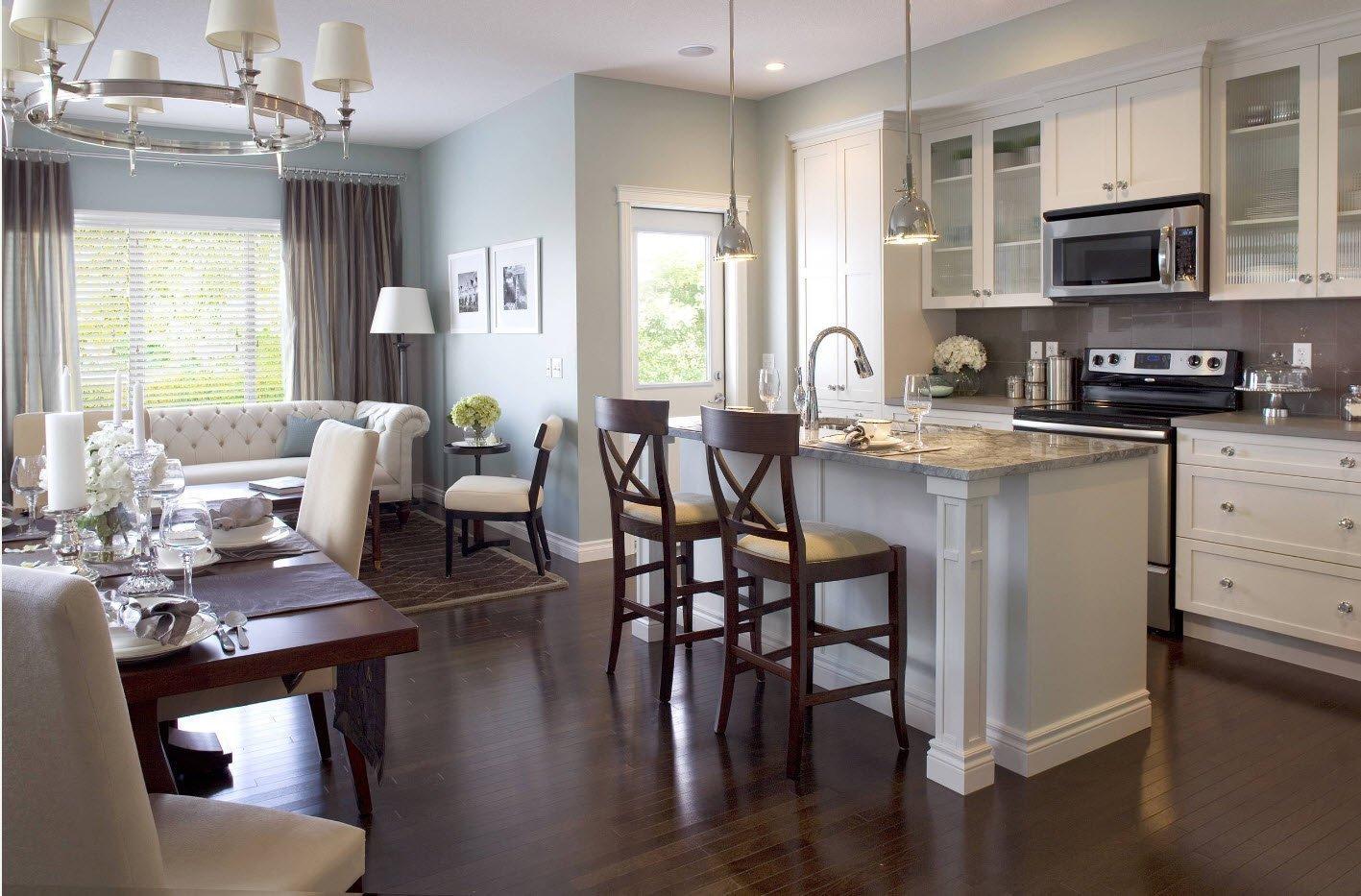 кухня прихожая фото интерьер