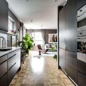 кухня прихожая фото вариантов