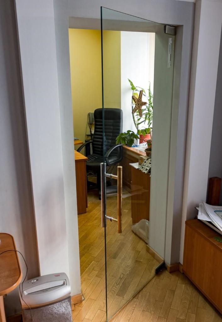 Стеклянное полотно маятниковой двери