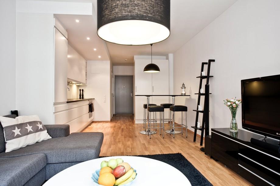 Интерьер однокомнатной квартиры прямоугольной формы