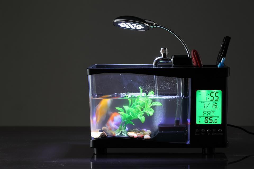 аквариум часы
