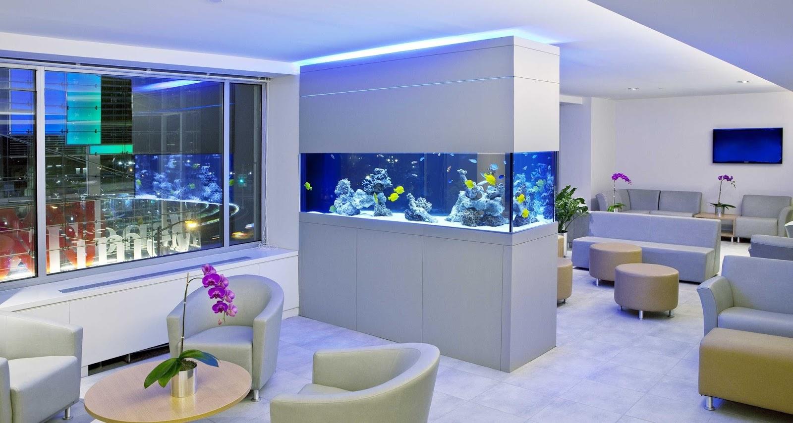 аквариум перегородка