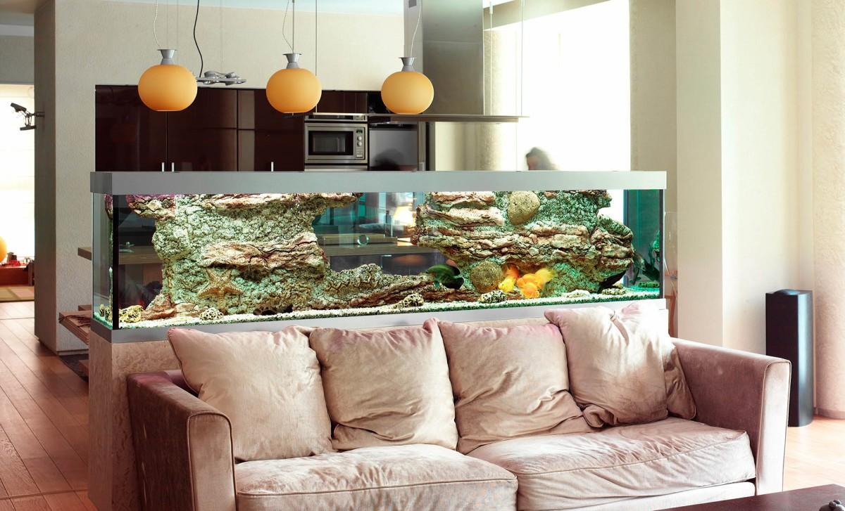 аквариум в однокомнатной квартире фото отсутствует ручной
