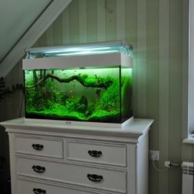 аквариум в квартире идеи декор