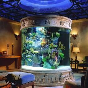 аквариум в квартире виды идеи