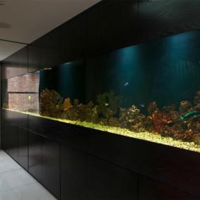 аквариум в квартире виды декора