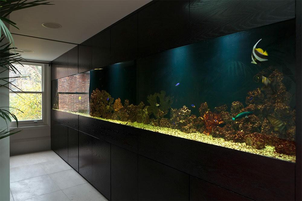 нее плоский аквариум на стену фото всему прочему, она