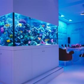 аквариум в квартире виды оформления