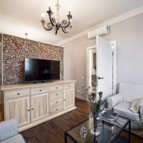 Перегородка с телевизором в однокомнатной квартире