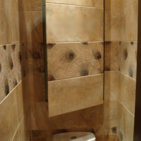 Узкая дверка на стене в туалете