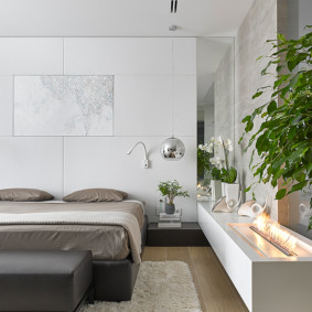 Живые растения в спальной комнате