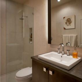 Стеклянная перегородка в ванной с душем
