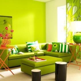 гостиная комната в зелёном цвете виды