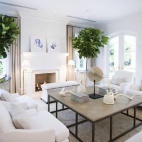 Зеленые растения в светлой комнате