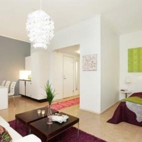планировка квартиры студии площадью 24 кв м виды декора