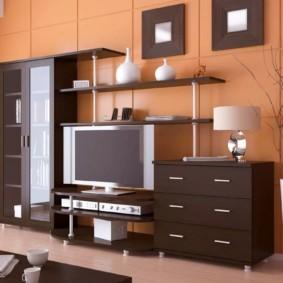 стенка под телевизор в гостиную фото декор