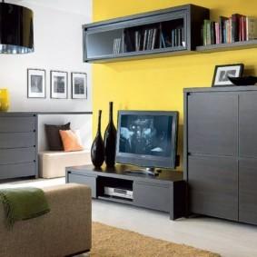 стенка под телевизор в гостиную виды идеи