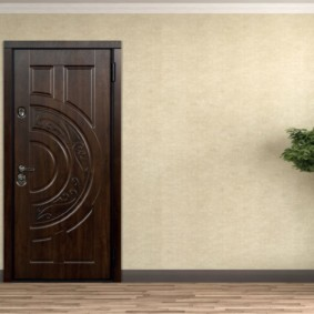входные двери в квартиру фото интерьер