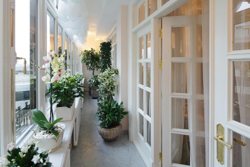Узкий балкон с цветущими орхидеями