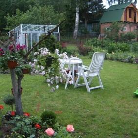 Садовая мебель на зеленой лужайке
