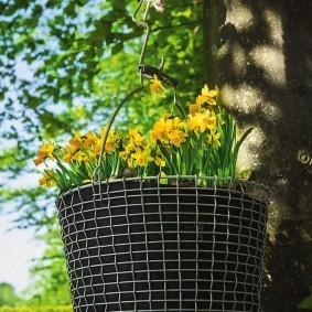 Подвесное кашпо на дереве в летнем саду