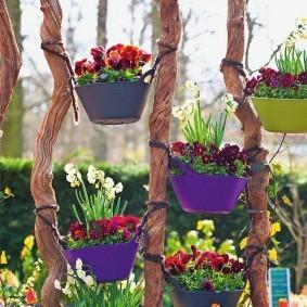 Горшки с цветами на деревянных кольях