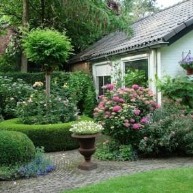 Многолетние растения перед дачным домиком