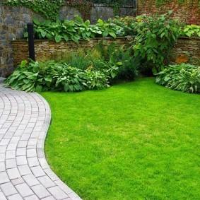 Аккуратный газон вдоль садовой дорожки