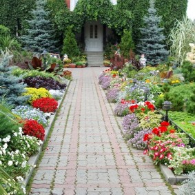 Цветущие растения по сторонам садовой дорожки