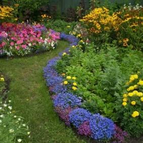 Желтые бархатцы на цветочной клумбе