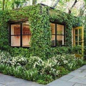 Садовая беседка с вьющимися растениями