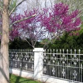 Кованная ограда на белых столбах
