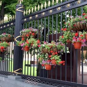 Кашпо с цветами на железном заборе