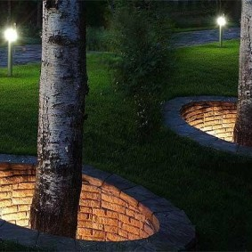Красивая подсветка стволом деревьев на дачном участке
