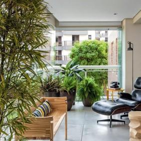 Удобное кресло на лоджии с растениями