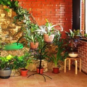 Кирпичная лоджия с комнатными растениями