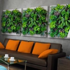 Панно из живых растений над диваном