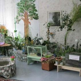 Зимний сад с аквариумами в жилой комнате