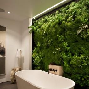 Стена из растений в ванной комнате