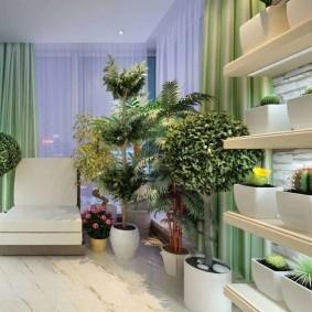 Пальмы и другие деревья в интерьере квартиры
