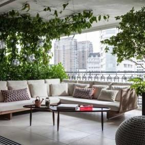 Угловой диван под вьющимися растениями