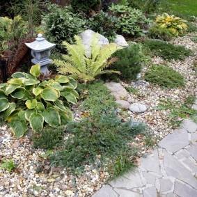 Садовый фонарик за кустиком хосты