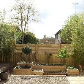 Компактный огород в деревянных ящиках