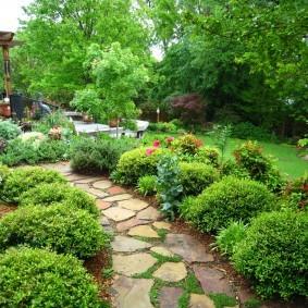 Каменная дорожка в саду лесного стиля