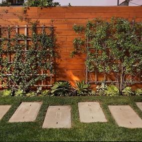 Декор деревянного забора живыми растениями