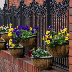 Кашпо с цветами на металлическом заборе