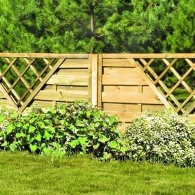 Деревянный забор на фоне хвойных растений