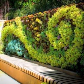 Озеленение металлического забора с кирпичными столбами